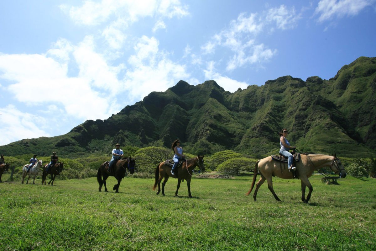 Horseback Tour in Kaaawa