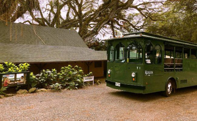 Kualoa Trolley Farm Tour
