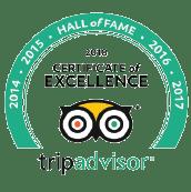 Certificate of excellence - tripadvisor logo